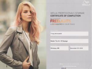 Certification: Wella Freelights Balayage
